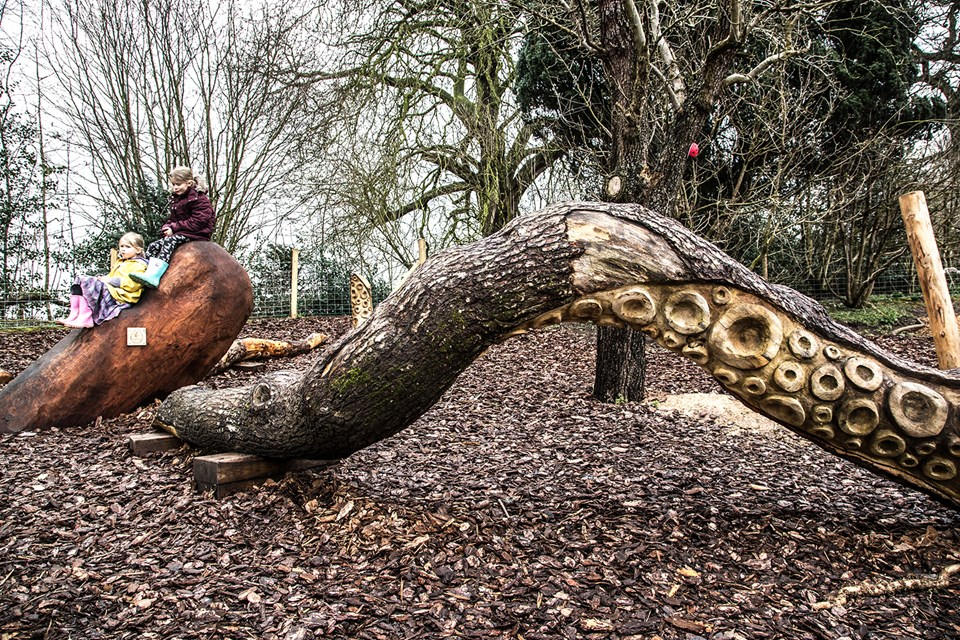 Shugborough tree play area
